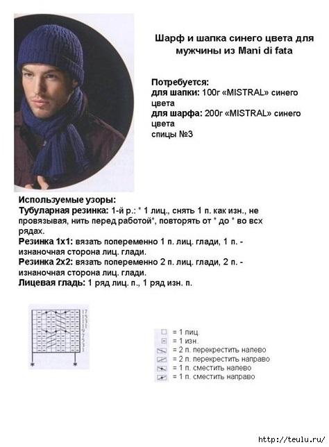 5308269_mygskayshapka3 (474x644, 122Kb)
