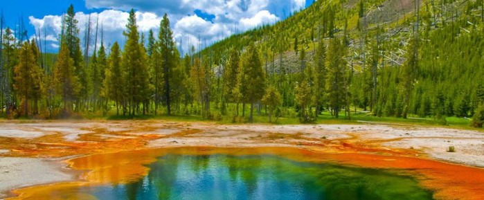 yellowstone-national-park-774x320 (700x289, 70Kb)