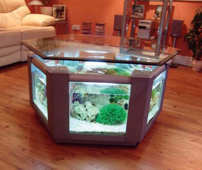 fresh-fish-tank-in-living-room-with-photo-of-fish-tank-model-on-ideas (700x588, 331Kb)