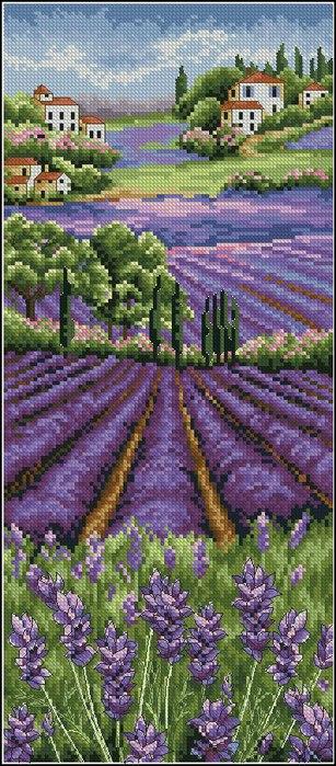 Анкор Лавандовое поле (307x700, 101Kb)