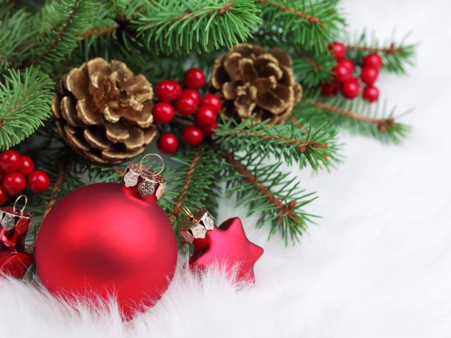 4617818_Christmas_wallpapers_Arrangement_of_Christmas_toys_and_bumps_on_Christmas_052583_29 (640x480, 167Kb)