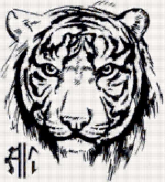 тату тигр 16цв (581x640, 279Kb)
