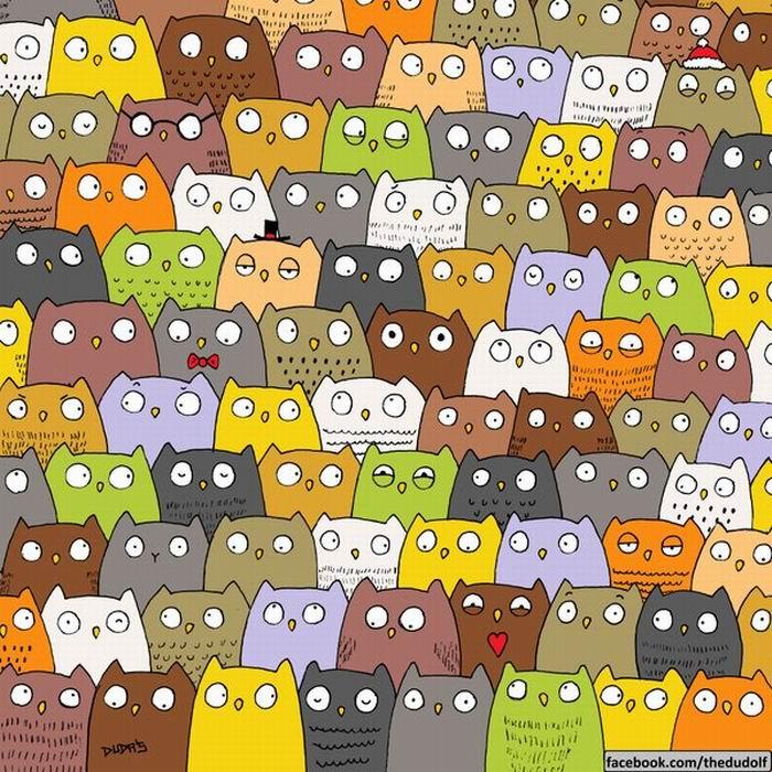 "alt=""Найди кошку в толпе сов""/2835299_ (700x700, 133Kb)"