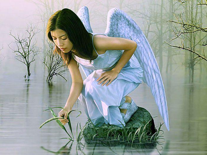 angeli+angel+misticheskie+sozdaniya+mistika+volshebnie+sozdaniya+skazochnie+sozdaniya+magicheskie+sozdaniya+fentezi+fentezi+angeli+oboi+oboi+angeli+80848651999 (700x525, 67Kb)