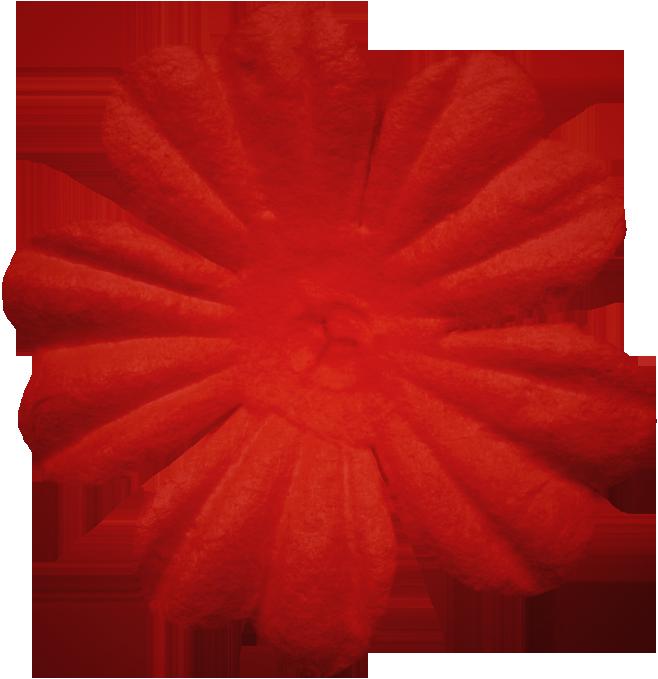 lliella_PurrfectlyFuzzy_flower7 (658x679, 402Kb)