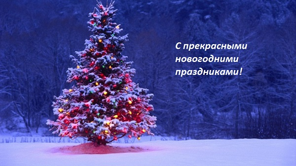merry-christmas-2015-greetings-1024x576 (600x337, 86Kb)