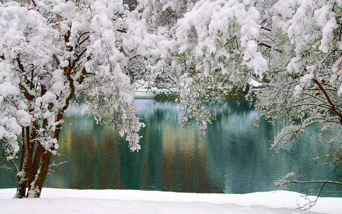зимний лесной пейзаж 13 (700x437, 370Kb)