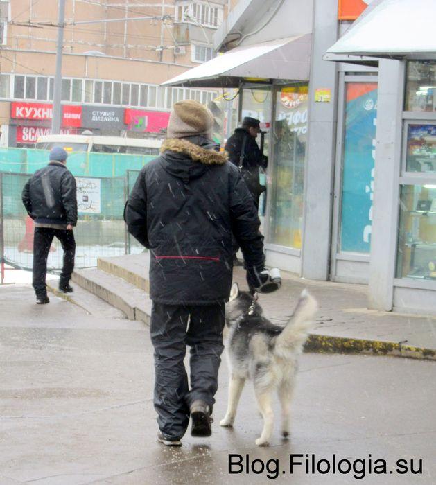 Молодой человек с собакой на поводке у станции метро Октябрьское поле в Москве (629x700, 66Kb)