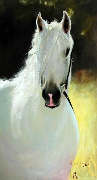 белая лошадь (326x600, 132Kb)