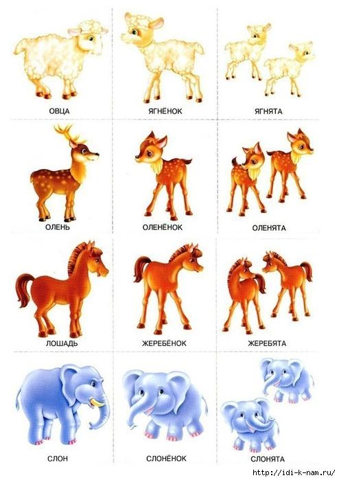 игры на множественное число детенышей животных x Игры на грамматический строй речи в детском саду