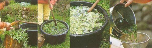 крапива удобрение (605x194, 43Kb)