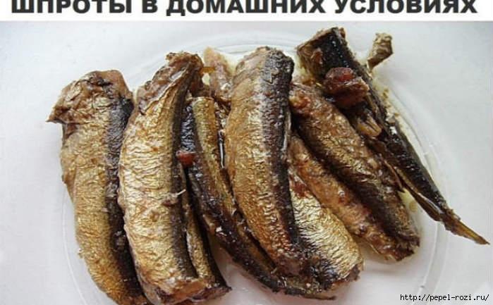 Шпроты в домашних условиях рецепт с фото пошагово