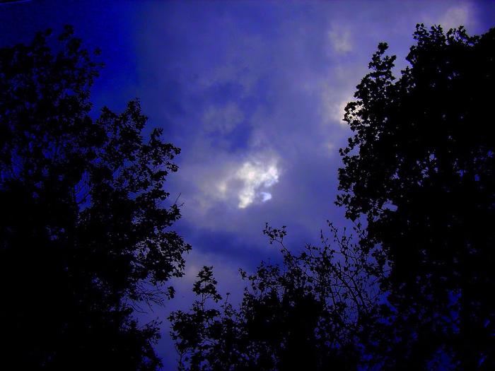 ночная тишина (700x525, 376Kb)
