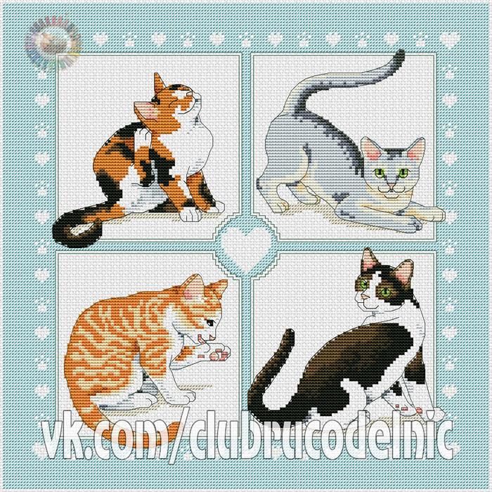 Feline Foursome (700x700, 833Kb)