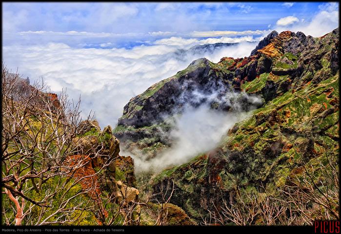 201406-Madeira-2736-FHD (700x481, 601Kb)