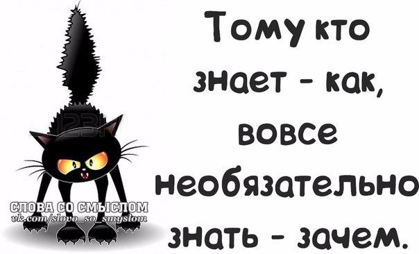 1390850013_frazochki-7 (604x366, 122Kb)