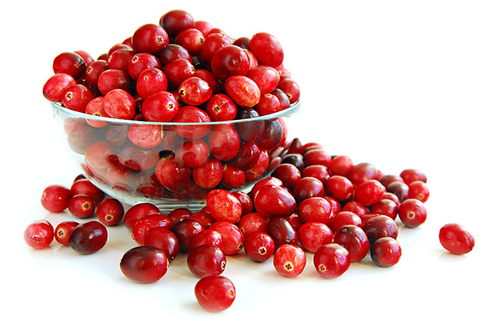 3240047_BloodVesselsCranberries (700x458, 126Kb)
