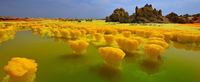 12dallol1-774x320 (700x289, 204Kb)