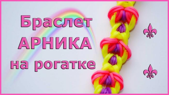 3881186_arnika (700x393, 170Kb)