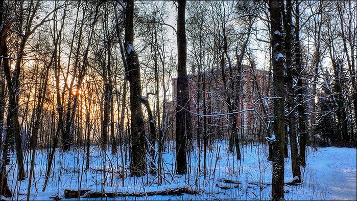 Усадебный парк в Быково