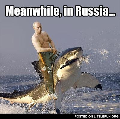 Путин на акуле/2976276_524b18bae691b20c24c4428d_736 (400x396, 65Kb)