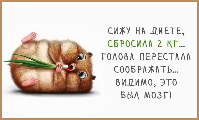 3875377_123459412_4216969_0_115d19_a7648d32_orig (696x420, 75Kb)