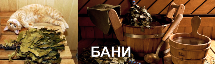 Banya1_ru.png.pagespeed.ce.6EphIYRZlo (700x210, 279Kb)