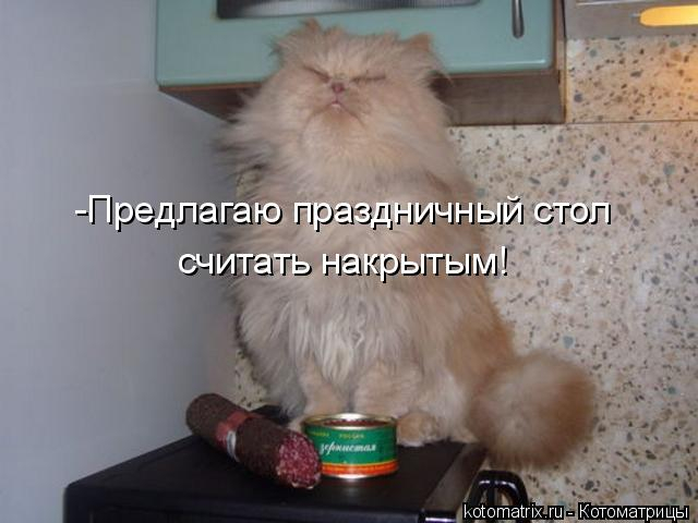 kotomatritsa_rU (640x480, 173Kb)