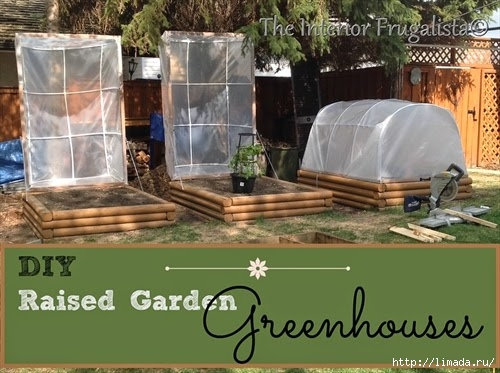 Mini Greenhouses with graphic (500x373, 150Kb)