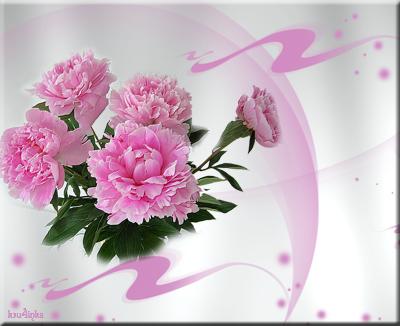Розовые-пионы (400x326, 165Kb)