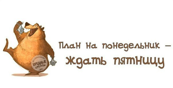 http://img1.liveinternet.ru/images/attach/c/11/114/159/114159373_large_102311132_1cU_T9Q1Z8.jpg