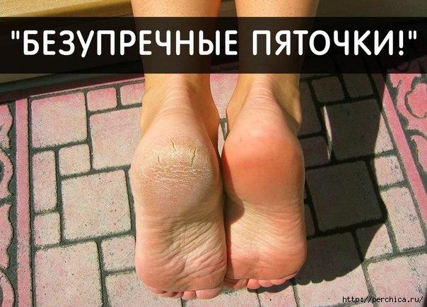 4979645_Z1BvlF_b_zg (604x435, 155Kb)