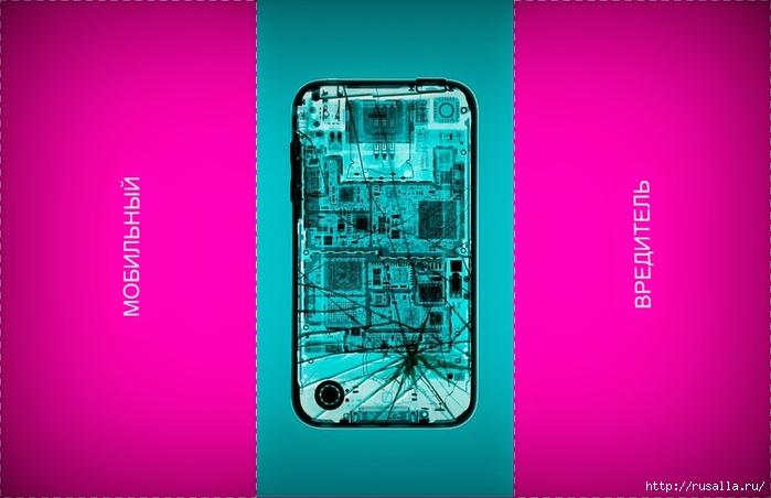 Мобильный вредитель1 (700x452, 166Kb)