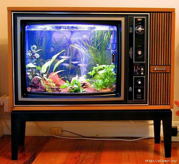 5283370_iz_starogo_Akvariym_iz_starogo_televizora (604x555, 199Kb)