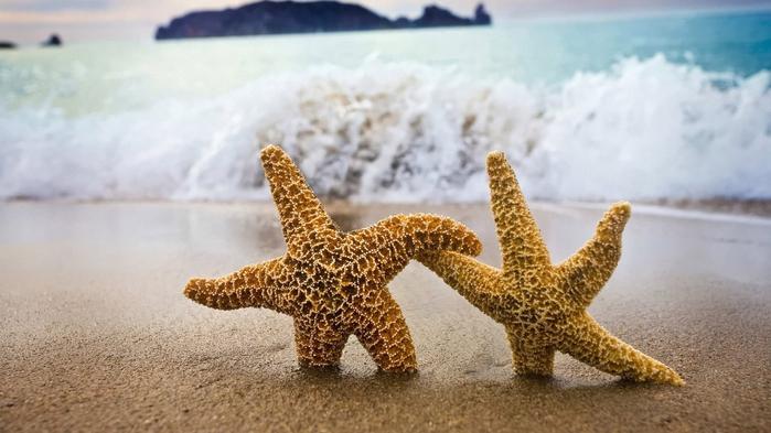 Лето и море (700x393, 264Kb)