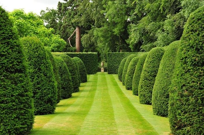 topiary_02 (700x464, 338Kb)