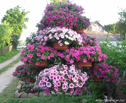 dachnyj-uchastok-cvetnik_0000_1 (500x410, 166Kb)