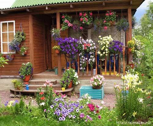 dachnyj-uchastok-cvetnik_0002_3 (500x410, 170Kb)