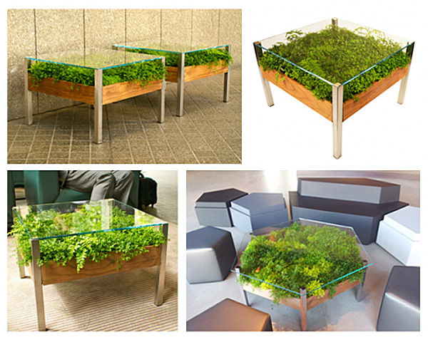 How-to-add-green-to-your-living-room-by-this-live-table-512x408 (600x473, 162Kb)