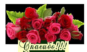 Спасибо(букет роз) (300x180, 80Kb)