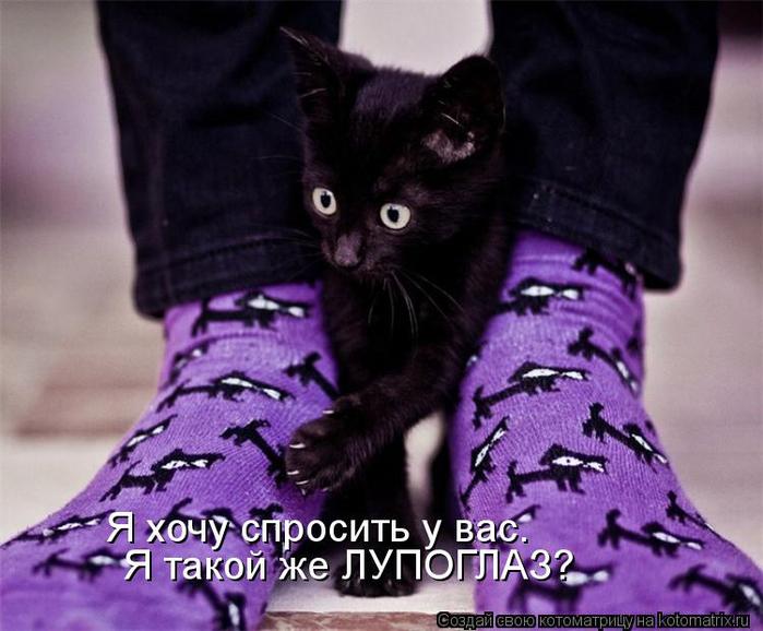 kotomatritsa_AN (700x578, 337Kb)