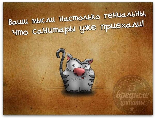 http://img1.liveinternet.ru/images/attach/c/11/114/252/114252713_large_22.jpg