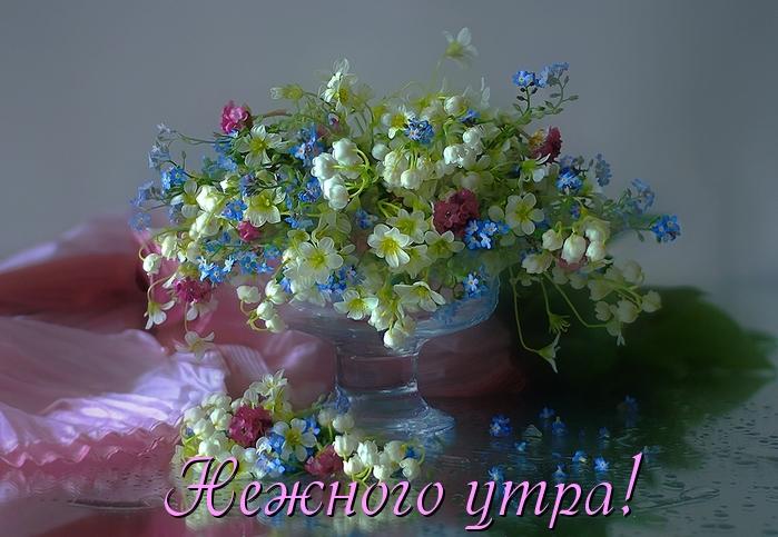 5214583_bfeea11_1_ (699x483, 280Kb)