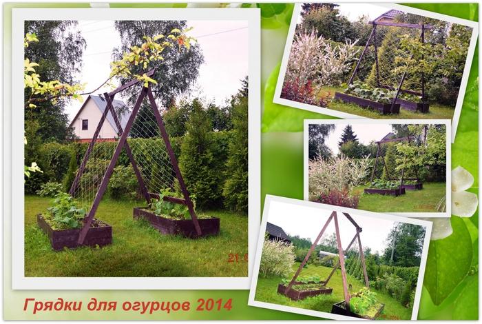 3587765_Ogyrci_2014 (700x470, 317Kb)