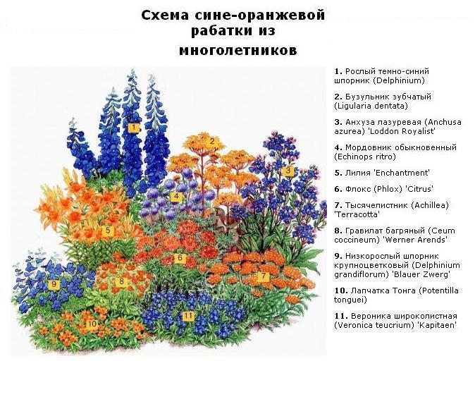5334332_shema_cvetnika5 (674x573, 87Kb)