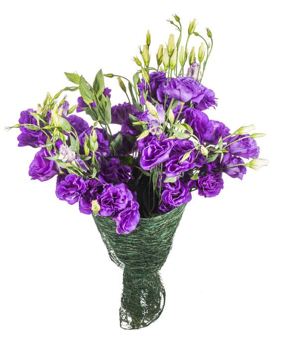 апост цветы (571x700, 117Kb)