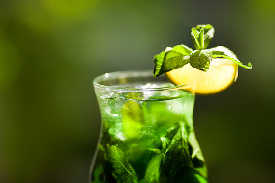 3407372_syrianmintlemonade (560x374, 33Kb)