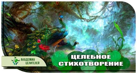 3377215_akademiya (541x292, 81Kb)