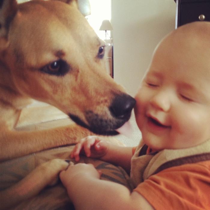 смешные фото детей и собак 2 (700x700, 393Kb)