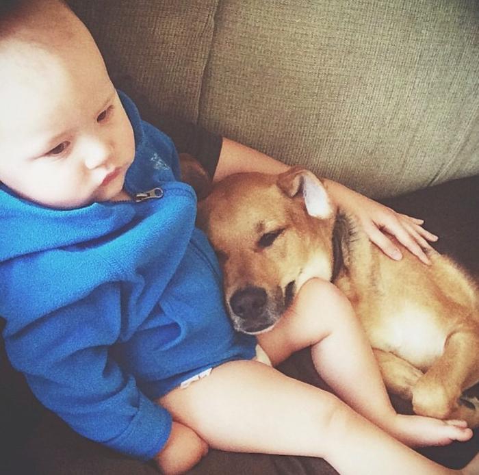 смешные фото детей и собак 9 (700x694, 438Kb)